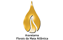 Araretama1
