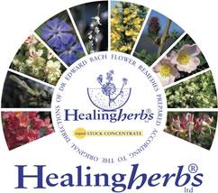 Healingherbs_mandala