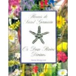 livro_fsg_12_raios